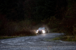 WRC - Wales Rally GB - Dyfi Forest - November 2015