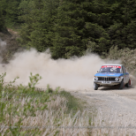 Severn Valley Stages - Crychan Forest - May 2015